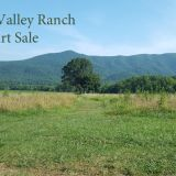 Art sale to benefit Wears Valley Ranch Saturday June 10, 2017