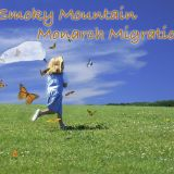 Smoky Mountain Monarch Migration