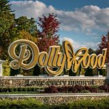 Dollywood Festival Of Nations 2019