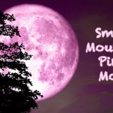 Smoky Mountain Pink Moon