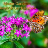 14th Annual Master Gardener Flower And Garden Show