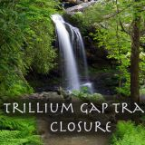 Smoky Mountain Trillium Gap Rehabilitation Closes Trail
