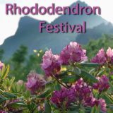 Rhododendron Festivals