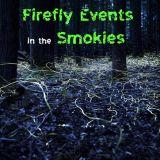 Smoky Mountain Synchronous Firefly Event 2020