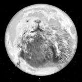 Smoky Mountain Full Beaver Moon