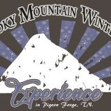 Smoky Mountain Winter Experience