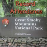 Great Smoky Mountains National Park Hosts 12.5 Million Visitors