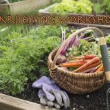 Keep Sevier Beautiful Gardening Workshops