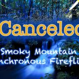 Smoky Mountain Synchronous Firefly Event Cancelled