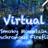 Virtual Synchronous Firefly Event