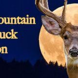 Smoky Mountain Full Buck Moon