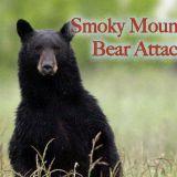 Smoky Mountain Bear Attack