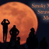 Smoky Mountain Strawberry Moon