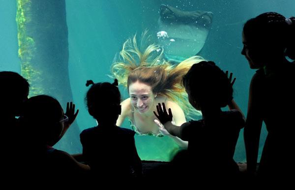 Mesmerizing Mermaids In The Smokies Memorial Day Weekend