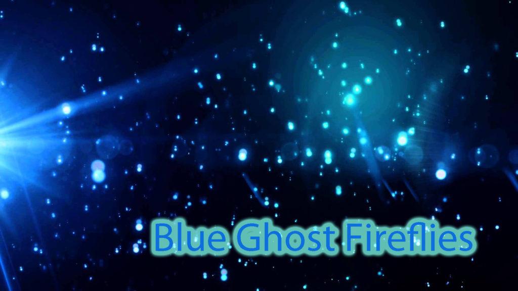 Blue Ghost Fireflies Near Asheville Just Heysmokies